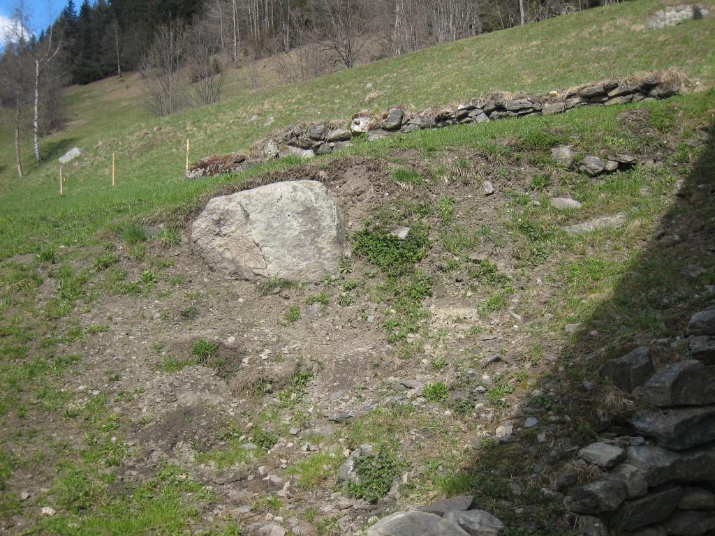 Un gros caillou non extrait du sol.