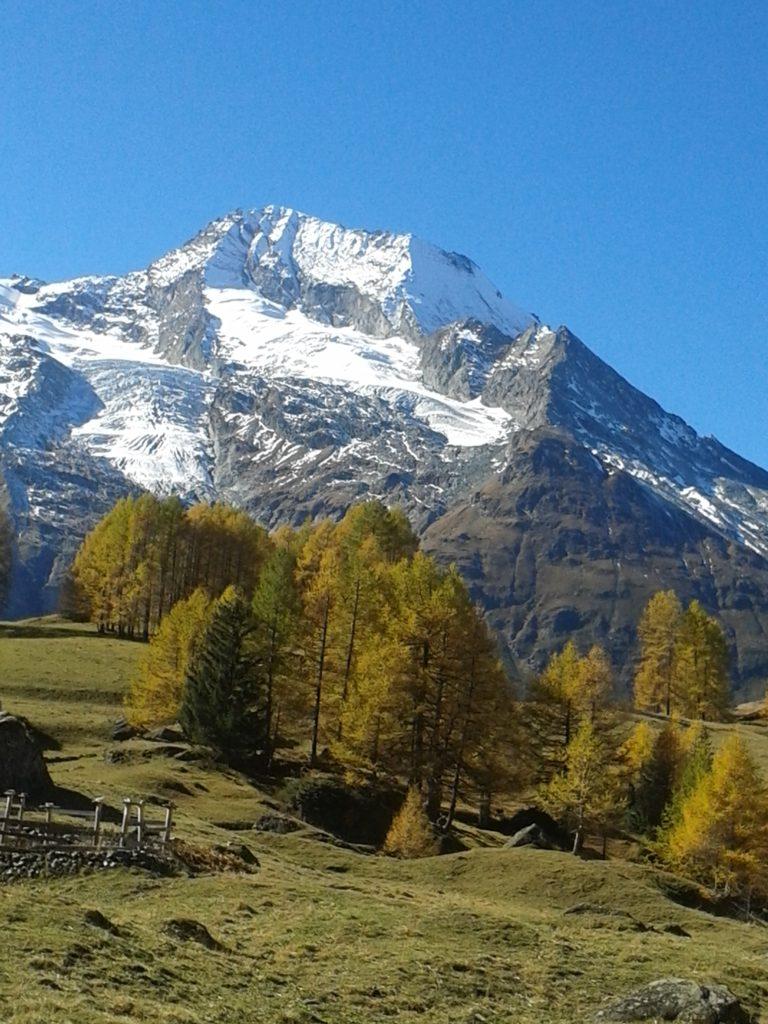 Le Monal - glacier