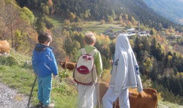 Apprendre l'automne aux plus jeunes