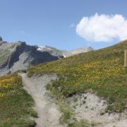 20 randonnées pour cet été…