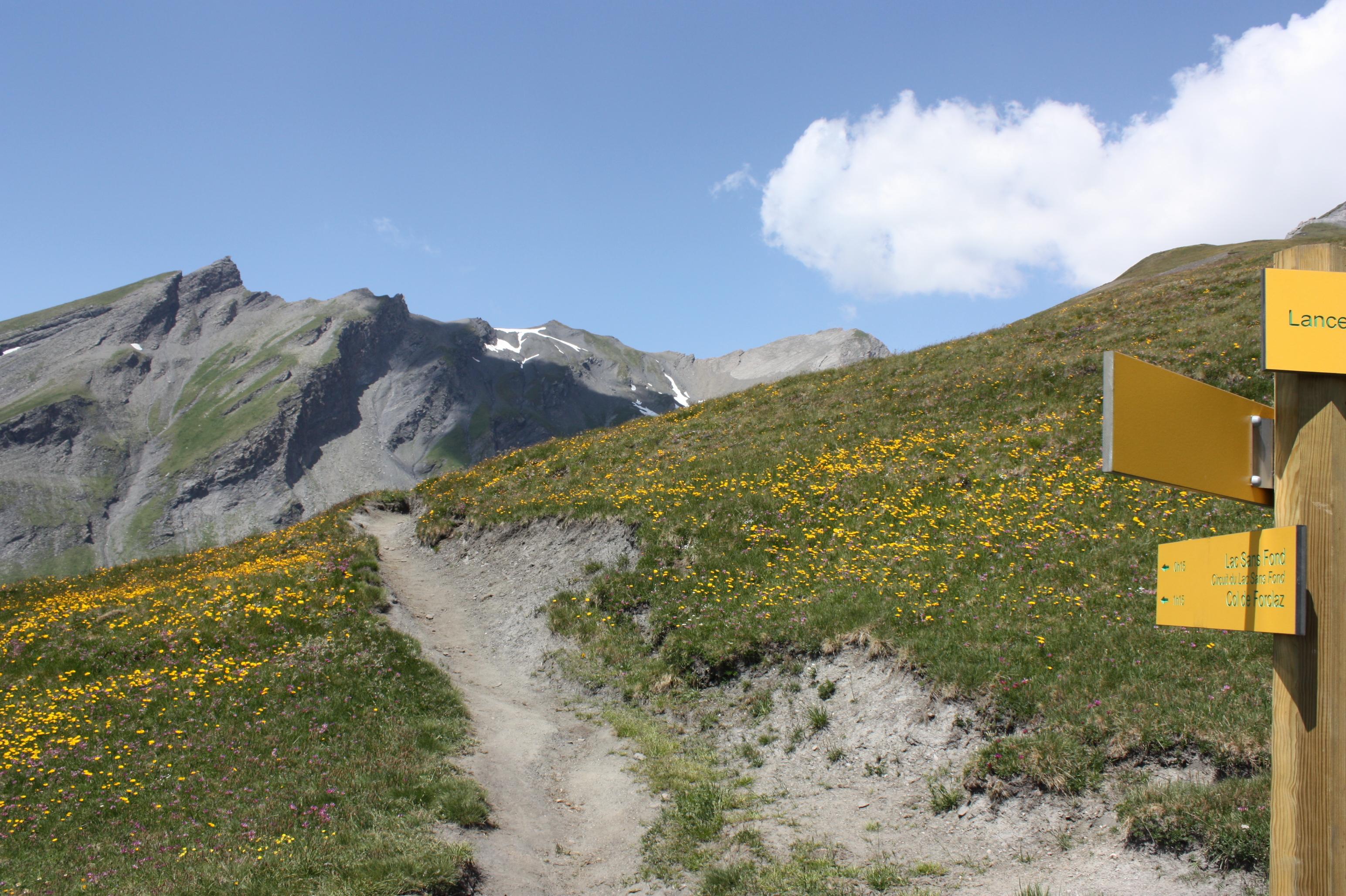 (Français) Panneaux et sentiers - Randonnée dans les Alpes